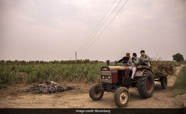 'Entire Families' Wiped Out By Covid In Rural India: Report