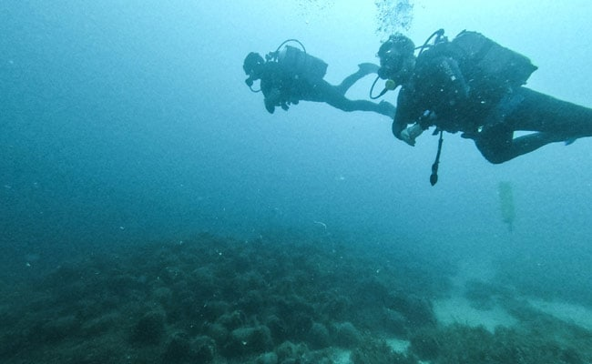Greece's First Underwater Museum Opens Ancient World To Dive Tourists