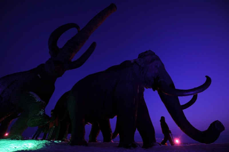 Will Bring Back Extinct Woolly Mammoth, Claims Bioscience Firm