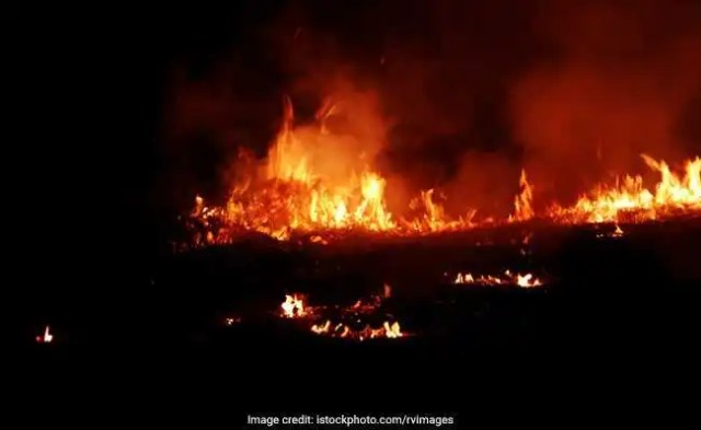 At Least 40 Cars Destroyed In Massive Fire At Showroom In Punjab: Cops