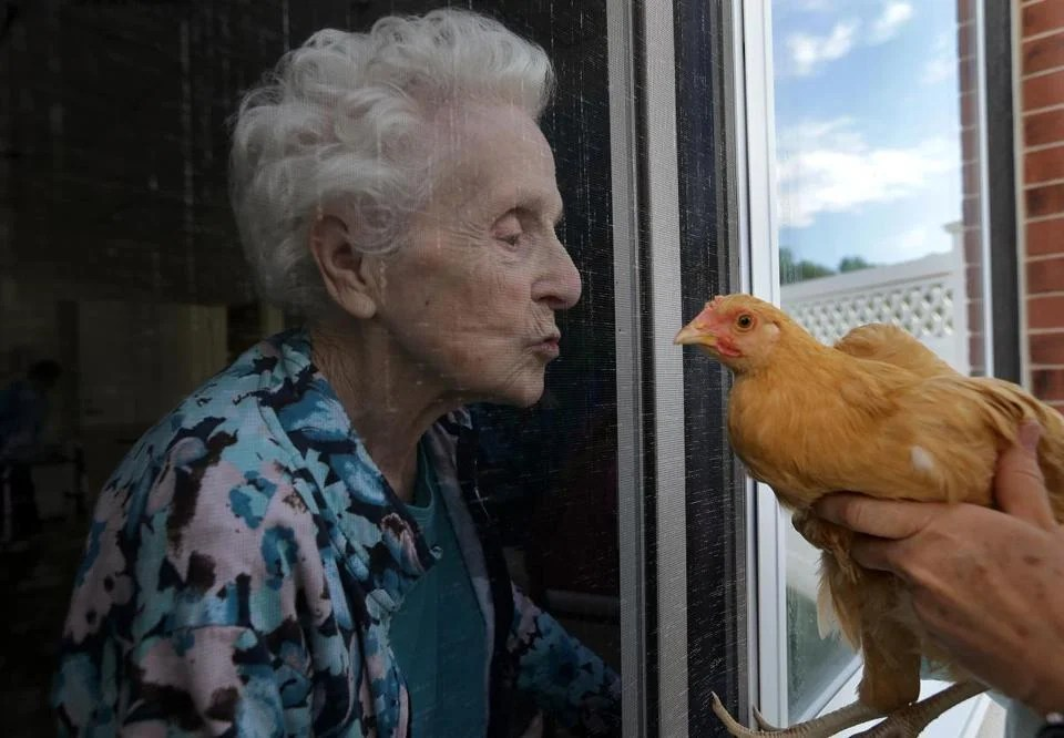 "Resident Sally Cross-Sevon was introduced to ""Clementine."""