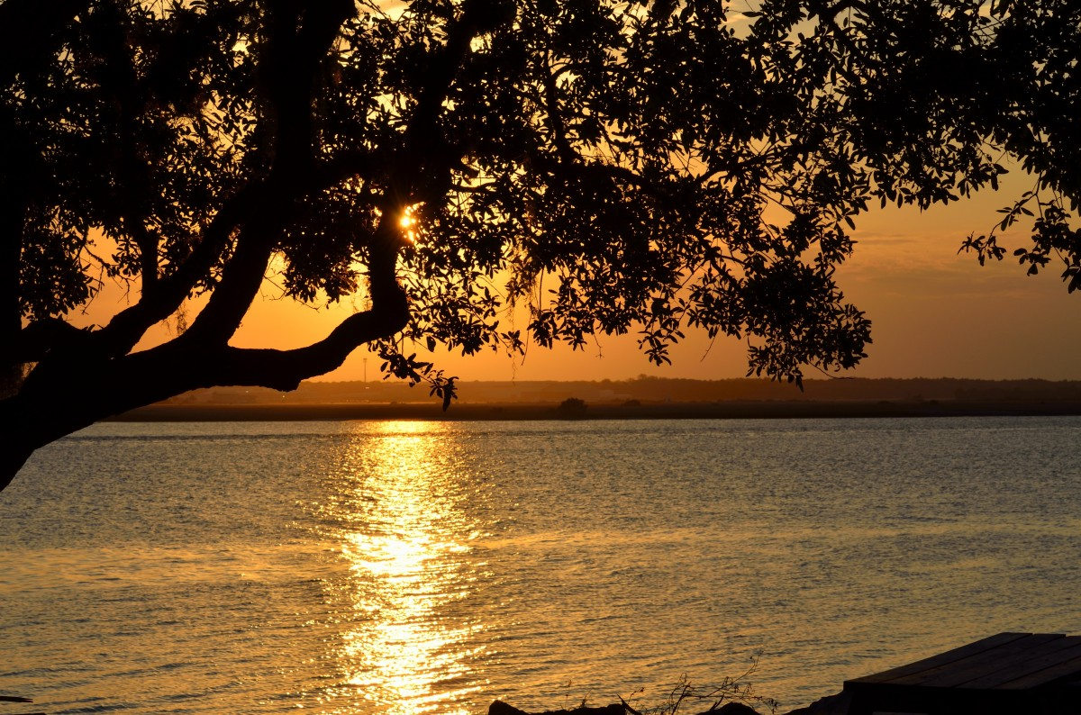 Free Images Landscape Nature Outdoor Silhouette