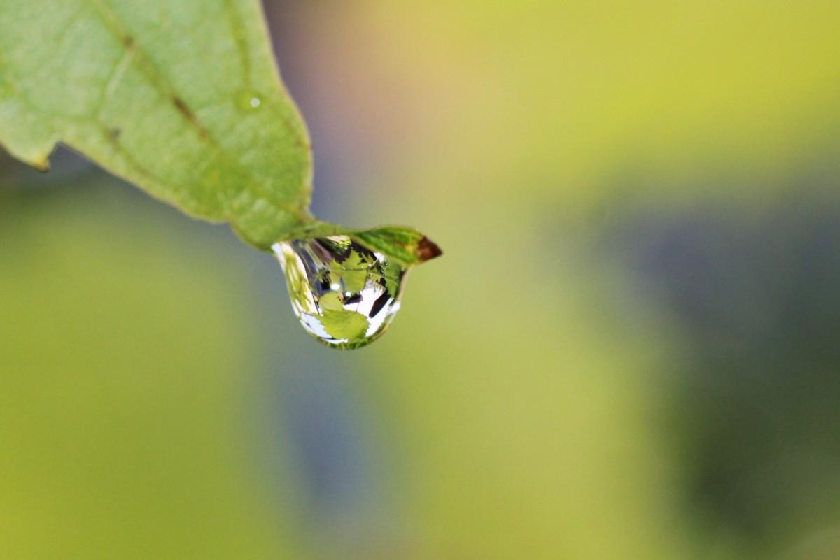 Free Images Liquid Light Structure Rain Wave Glass