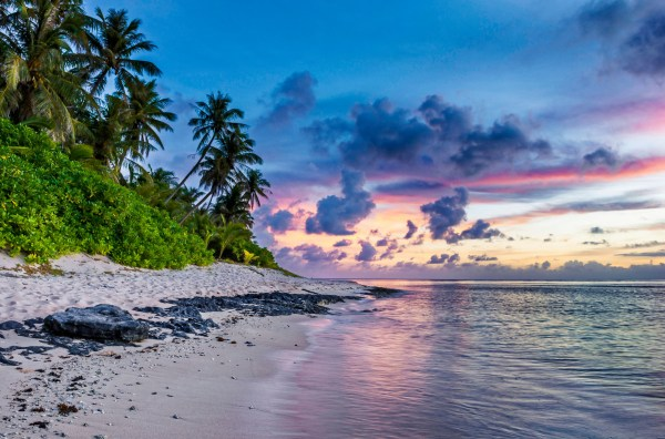 Free Images : landscape, sea, coast, tree, nature, rock ...