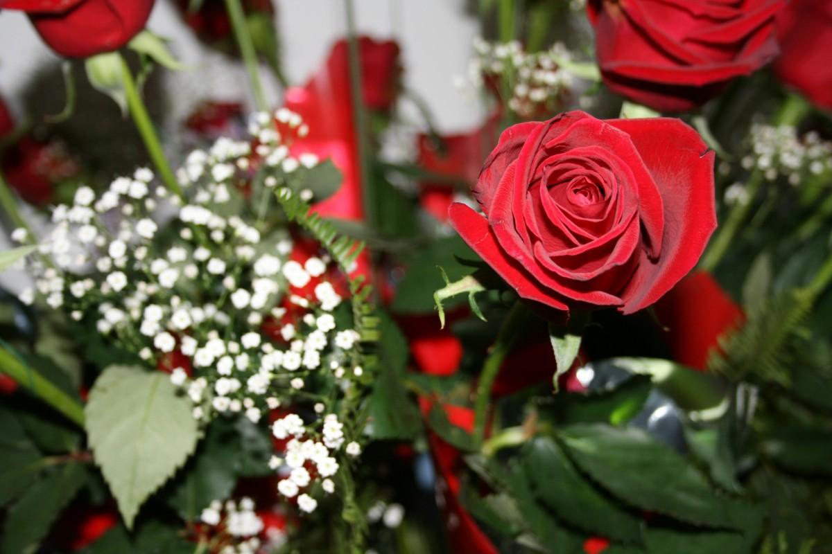 Bouquet Happy Mom Roses Birthday