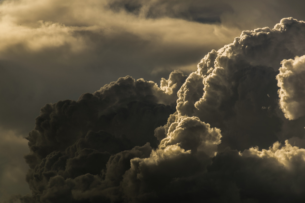 Free Images Tree Horizon Cloud Sky Sunlight Dawn