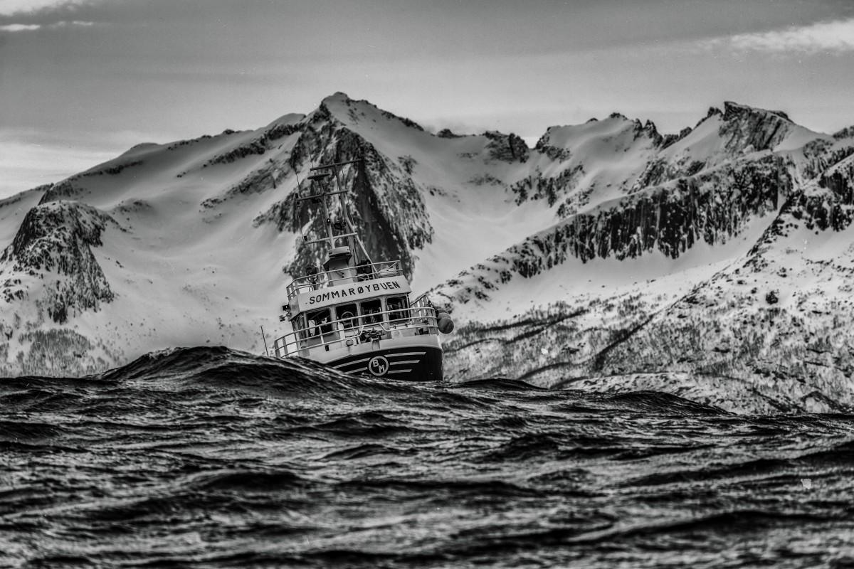blanc bateau vague navire
