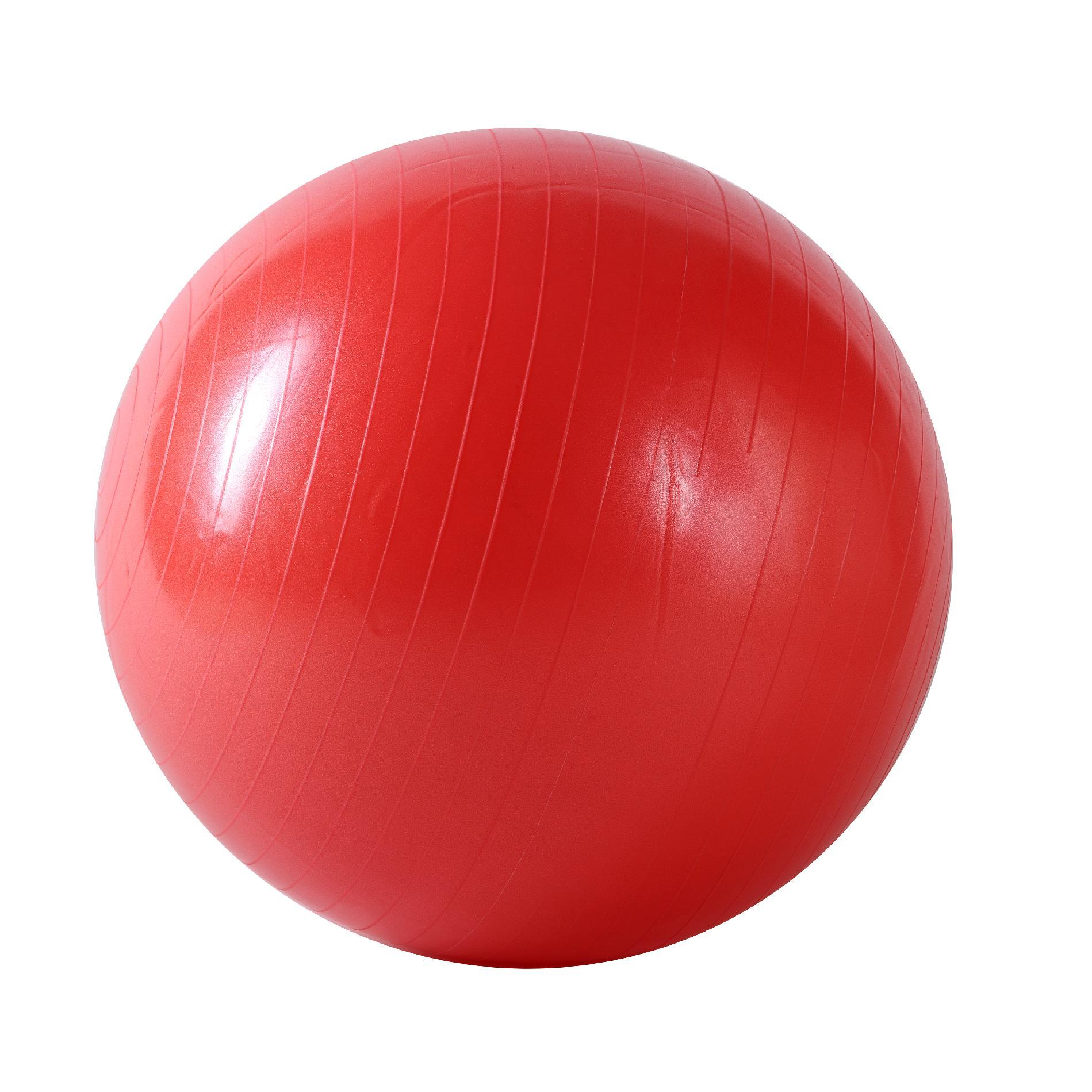Sunny Health Amp Fitness Anti Burst Gym Ball 55cm