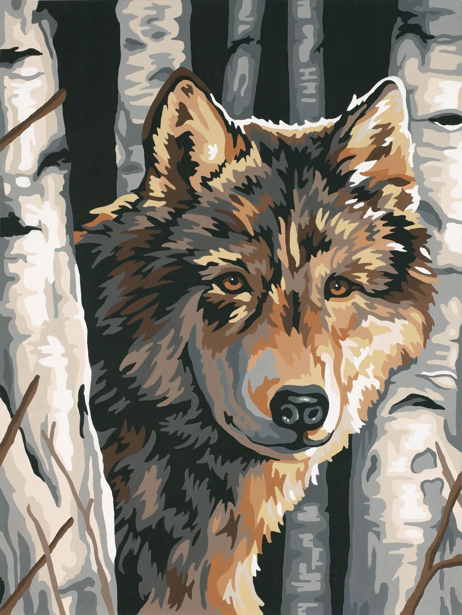 Dimensions Wolf Birch Paint By Number