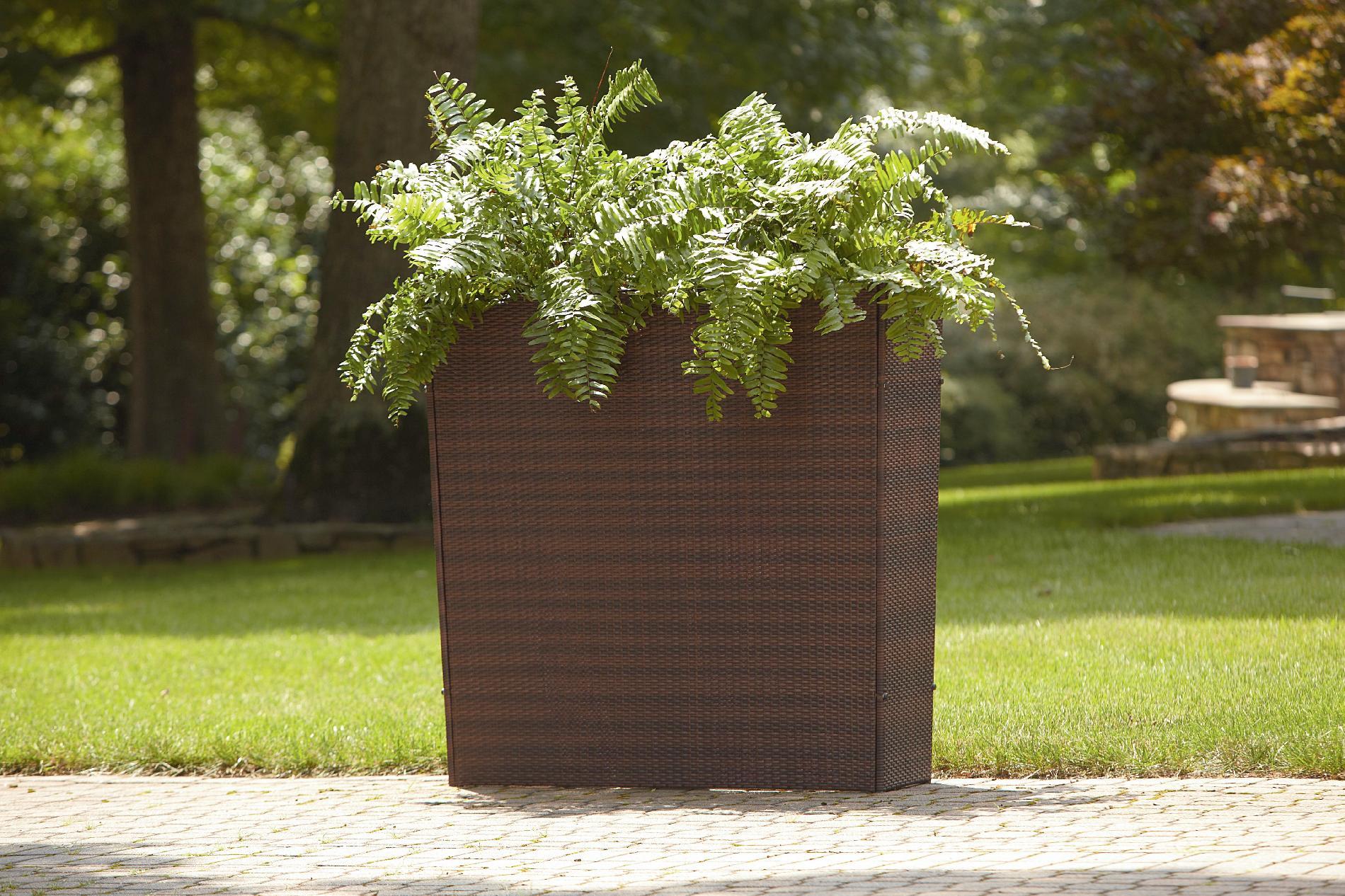 Ty Pennington Style Large Rectangle Room Dividing Plant