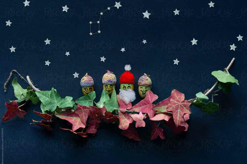 Acorn family with Santa Claus