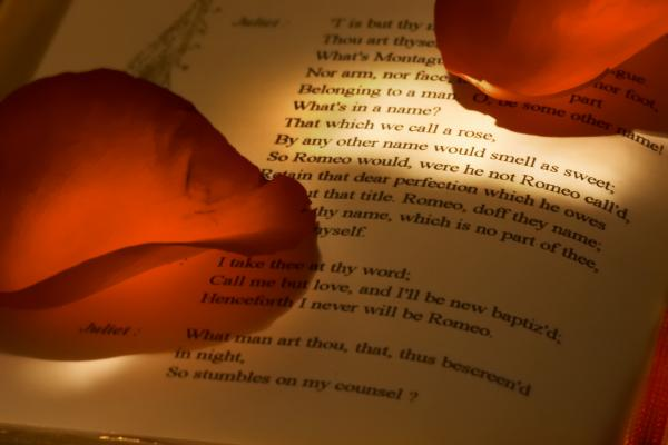 Poetry book with Petals