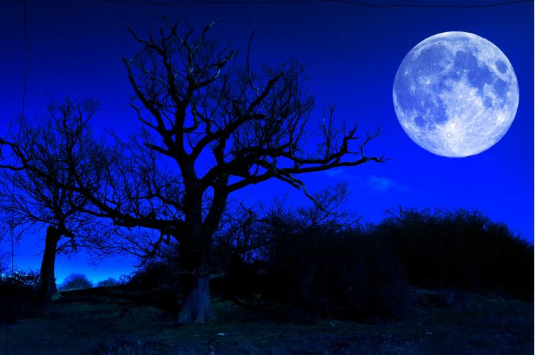 Following the springing forward of the clocks in the springtime where everyone loses an hour of sleep, we no. What Is a Blue Moon?