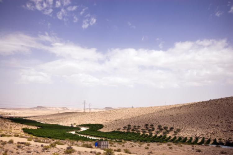UN desert awarenes day
