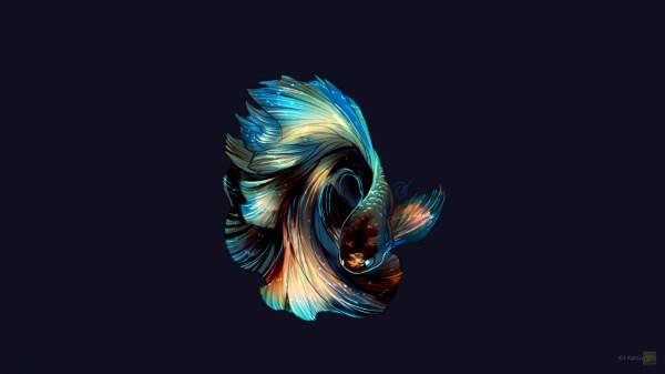 обои : Иллюстрация, рыба, Синий, Фотомонтаж, крыло ...