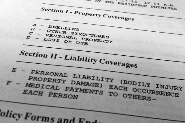 A homeowner's insurance policy