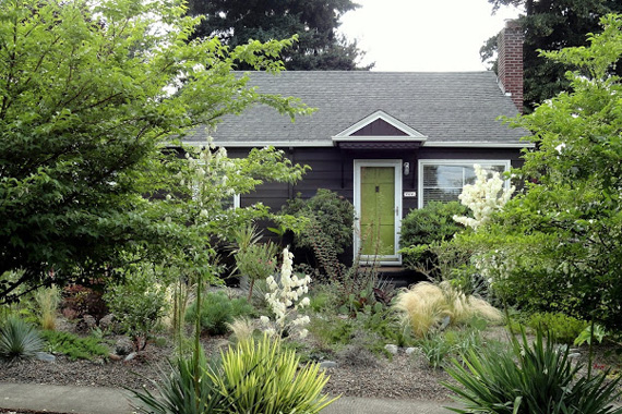 A native garden planted in a front yard | House landscaping