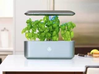 AVA Byte: NASA-Inspired Automated Smart Garden | The Smart