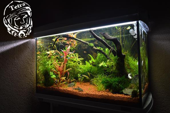 zapojte diy akvárium vodní čerpadlo