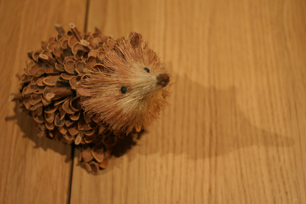 Pine Cone Hedgehog Staying With The Hedgehog Theme This