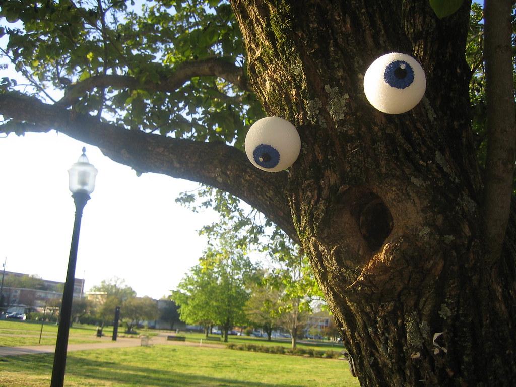 Trees With Eyes I Made Styrofoam Eyeballs And Put Them