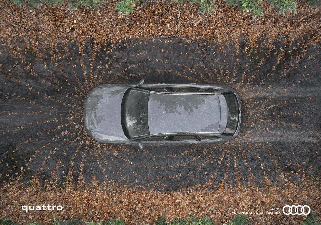 Audi Quattro - Fields 1