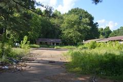 019 Horton Gardens