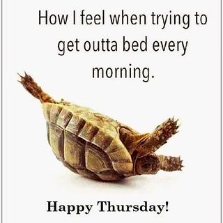 Happy Thursday! #lazy #thursday #morning #quotes #mood #we ...