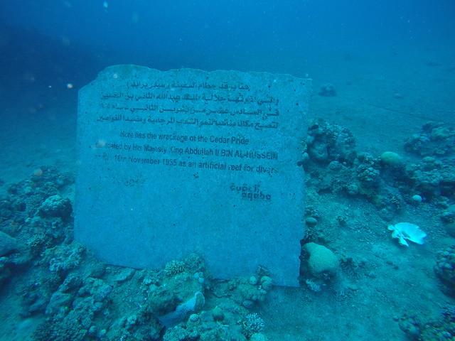 Aqaba - Cedar Pride (4)