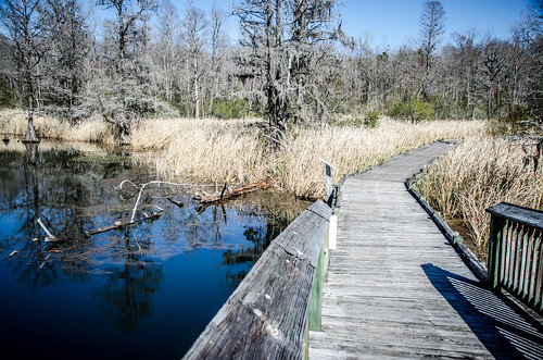 Old Santee Canal Park-35
