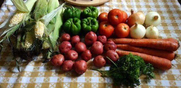 Homestead Creamery Week 9 Vegetable Delivery