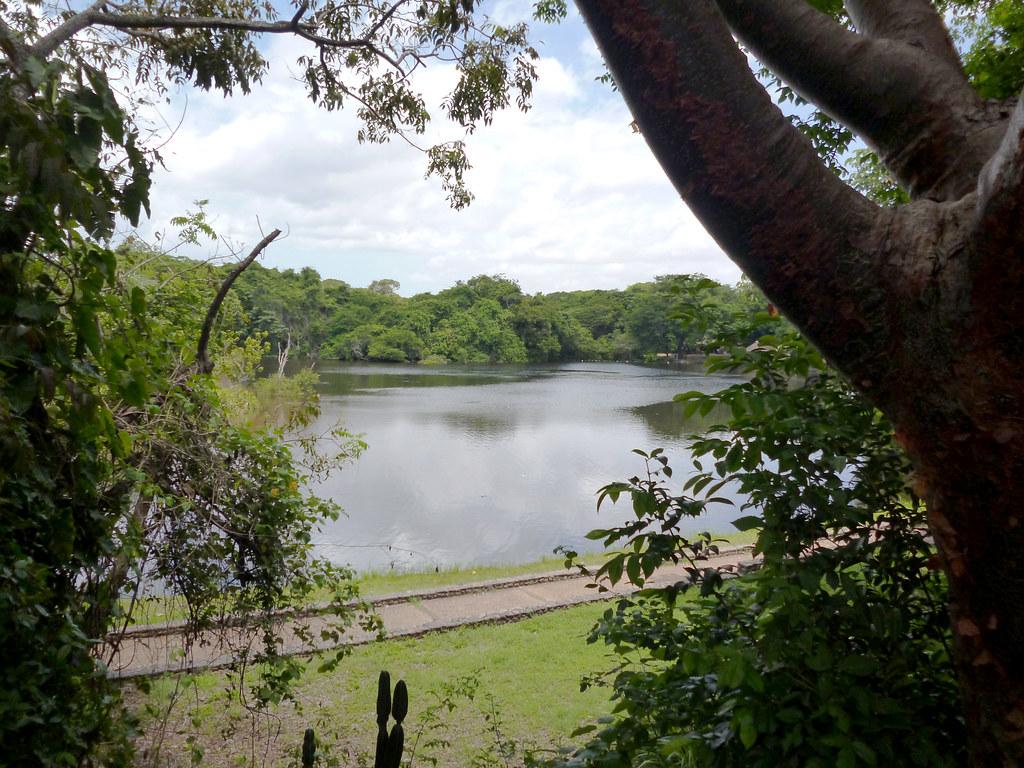 Parque Nacional La Llovizna