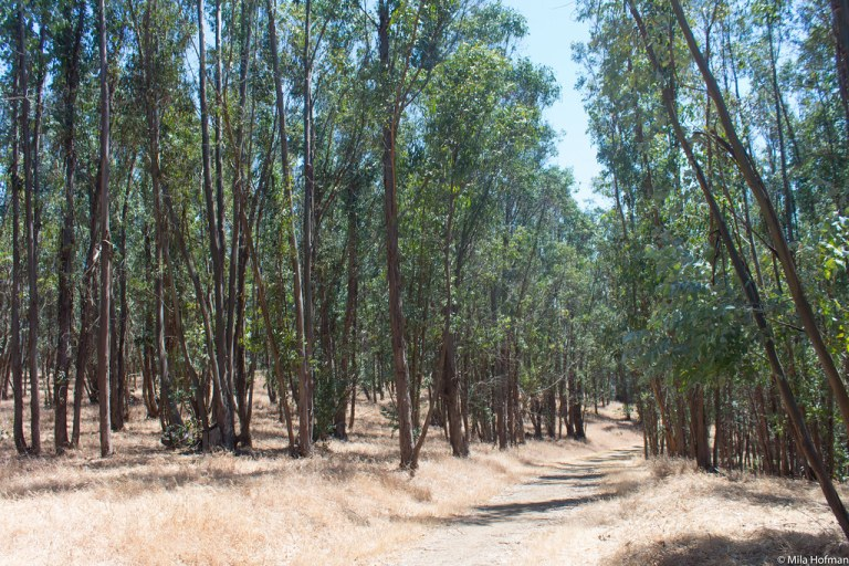 Hike near Porta Costa