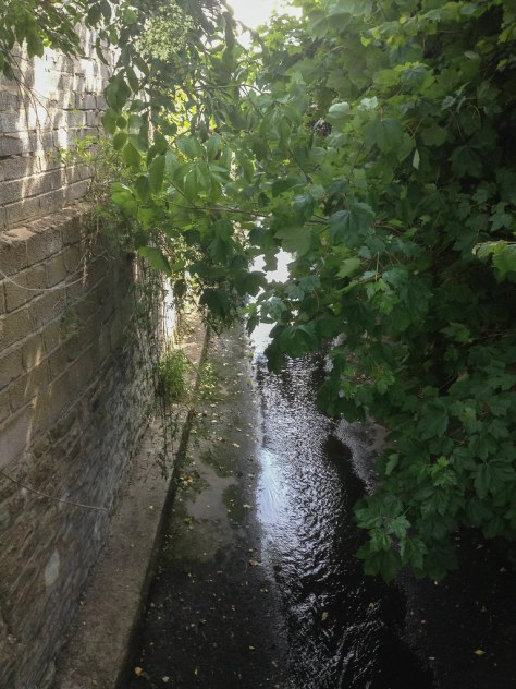 Brislington Brook
