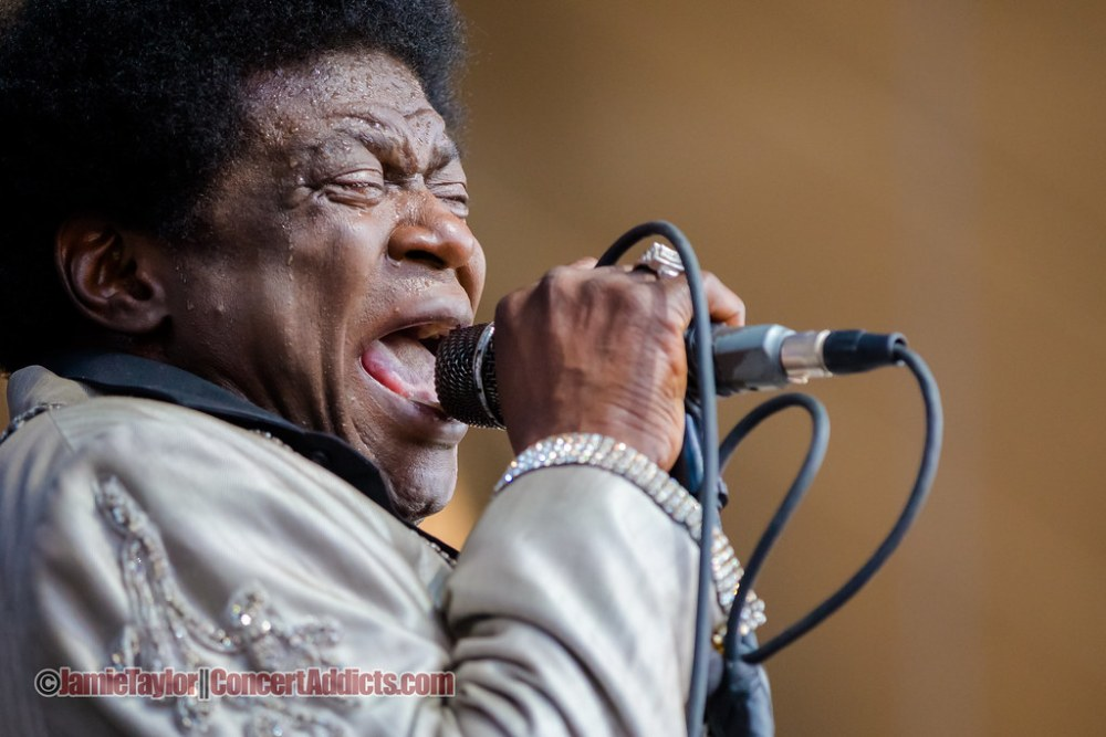 Charles Bradley at Pemberton Music Festival in Pemberton, BC on July 17, 2015