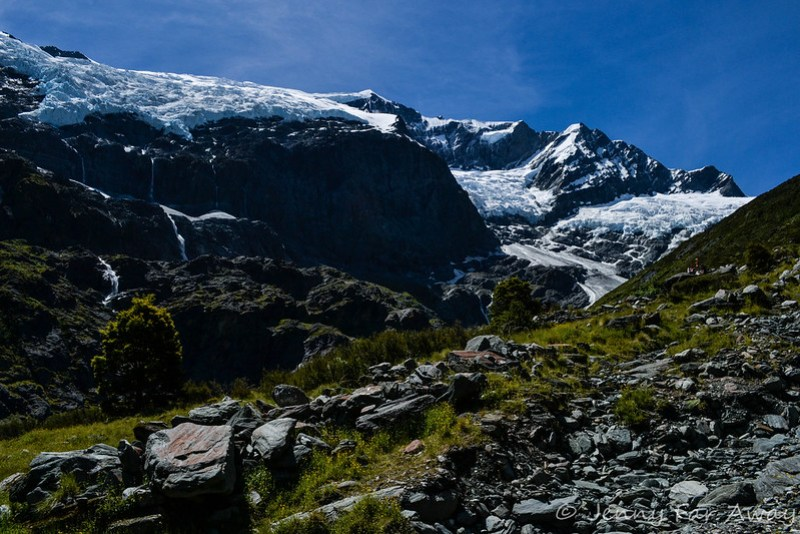 View of Rob Roy Glacier from the end of the track.