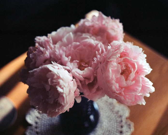 Peonies on the coffee table