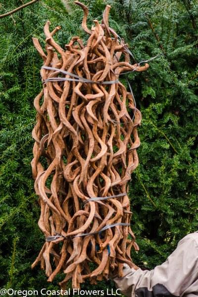 twisted rattan