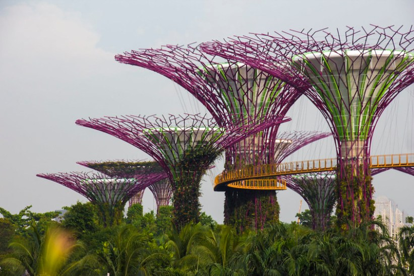 The Supertree Grove, Singapore
