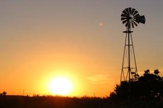 Windmills:)