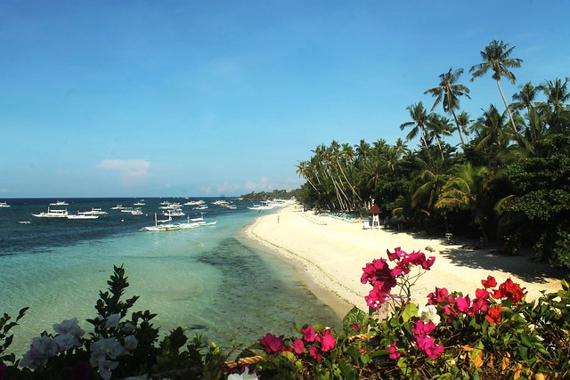 View of Alona Beach from Amorita Resort