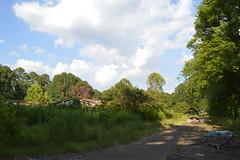 009 Horton Gardens