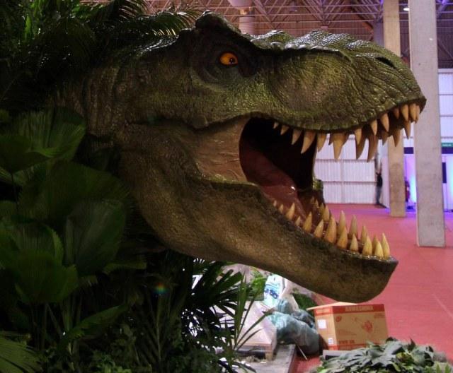 Wyvern Films T rex