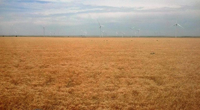 Wind turbine on the horizon