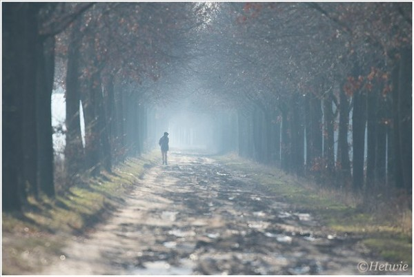 wandelaar langs het kanaal.