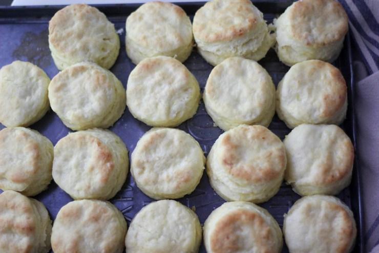 Corn Milk Biscuits 4 (1 of 1)