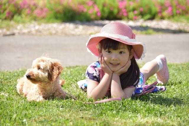 子供の教育に役立つ犬