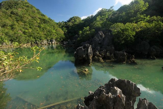 Marine Lake at Pitogo Bay