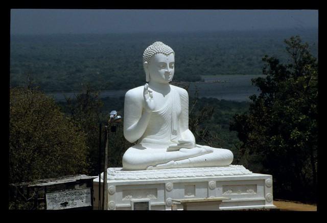 Image result for srilanka buddha