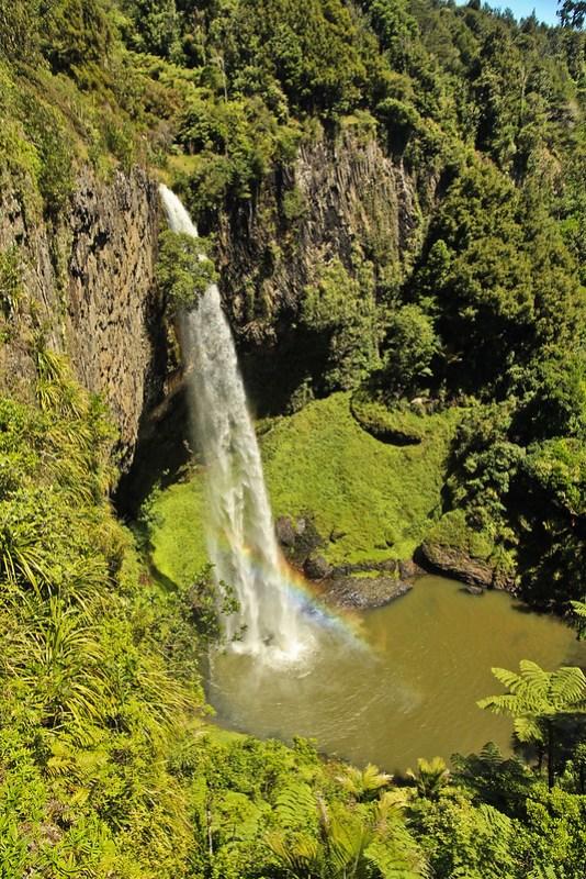 新西兰的瀑布是在新西兰的热带雨林中发现了一个新的艺术家。这是个美丽的瀑布和一场意外的旅程!